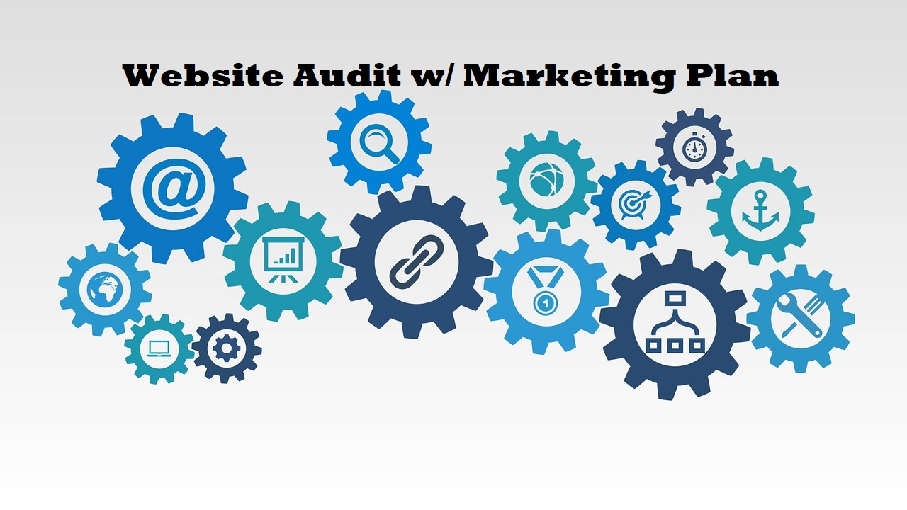 Do A SEO Website Audit And Provide A Marketing Plan