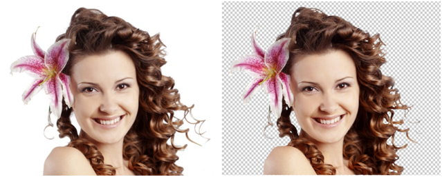 Great service Low-cost, Now you can mask  your 20 images