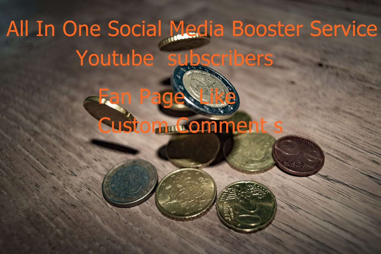 All In One Social Media Booster Service Within 24- 48 Hours for