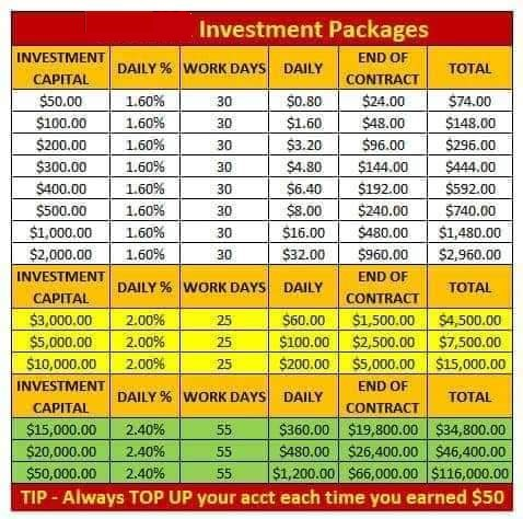 Teach 2 Daily Return on Investment Account