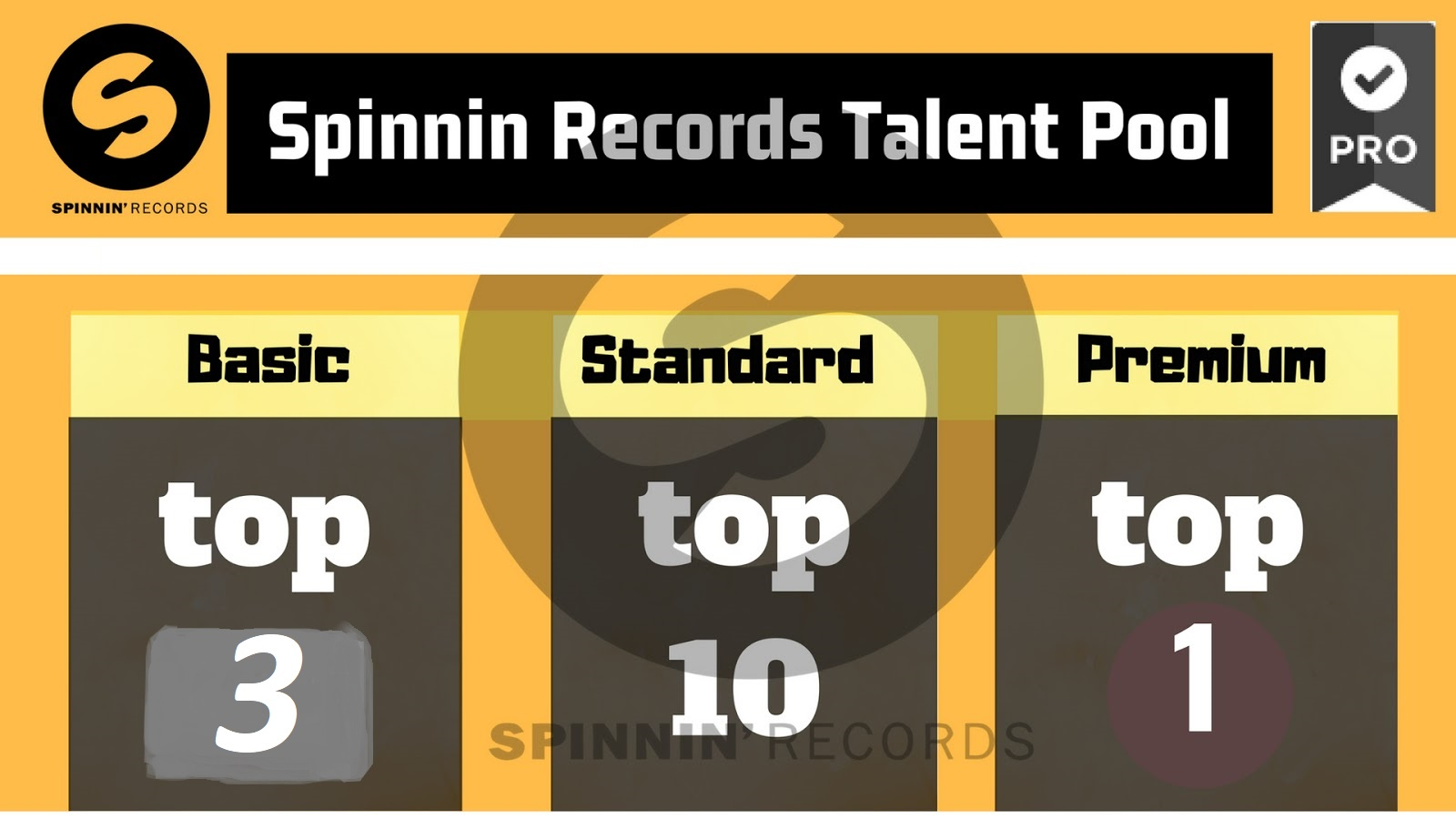 Guaranteed Top Track Rank In Your Spinnin Records Talent Pool Votes