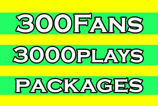 add 300 Fans & 3000 spotfy Streams