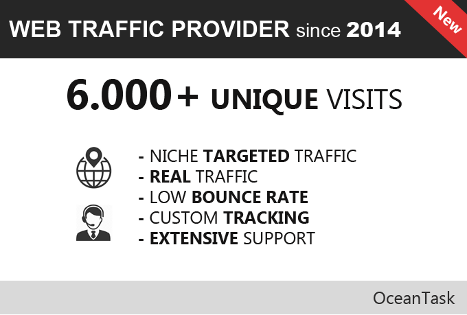 6000+ targeted web traffic, real visitors avg 200 per day
