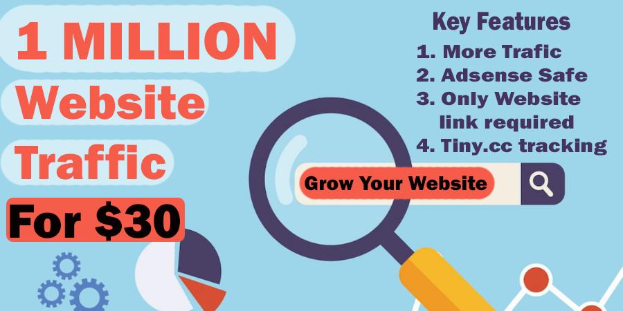 1 Million Website Visitors