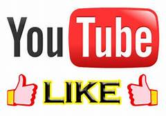 Get 150+High Quality YouTube Video Promotion Marketing