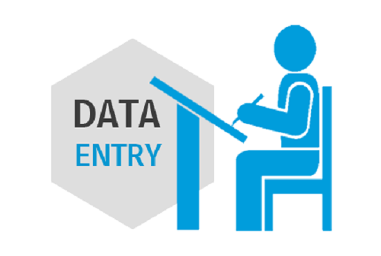Provide Professional Data Entry Within 24 Hours