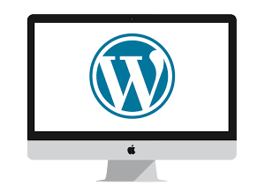 Buil Website for you in Wordpress