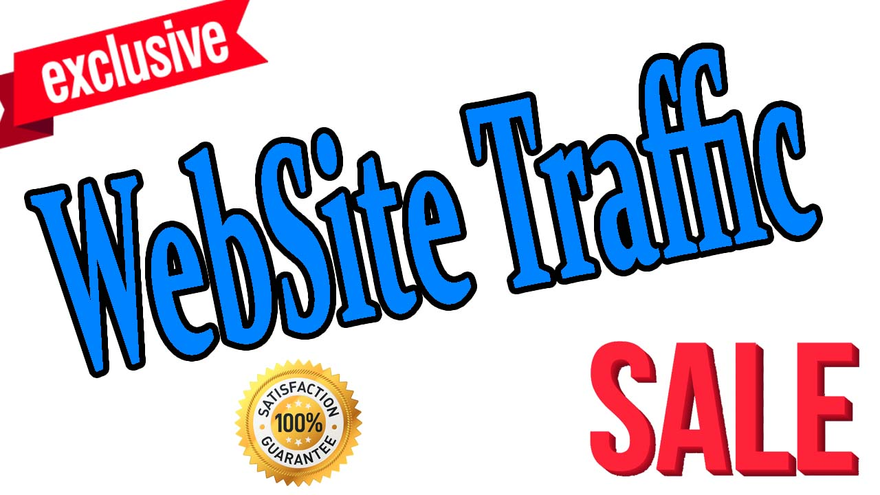 TARGETED 6 Months 100 Percent Safe Real Human Website Traffic