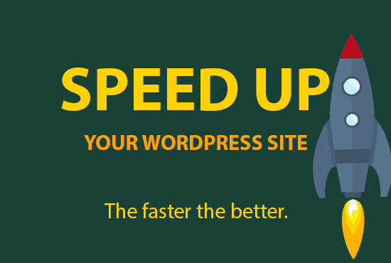 dramatically boost and increase wordpress speed,  fix slow admin in 24hr