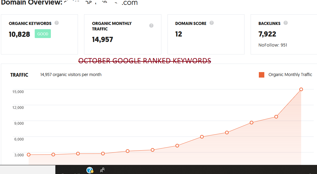 Google Ranking 20 - 30 Keywords Get Organic Traffic Real Human Visitors