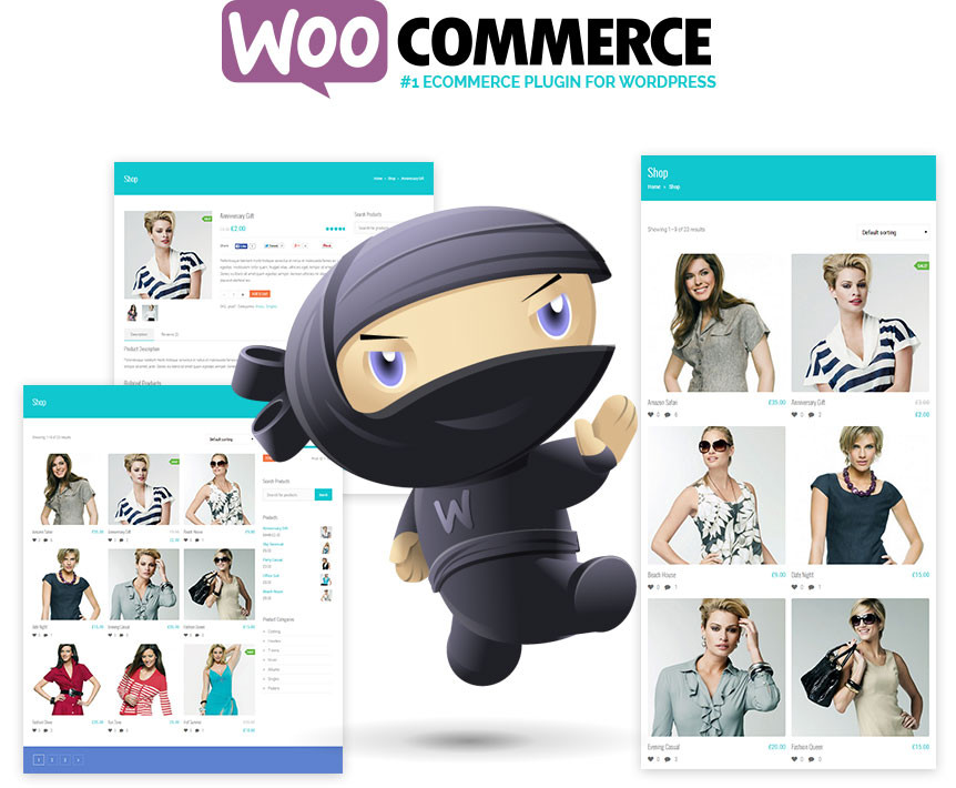 Build Ecommerce Website Online Store In WordPress