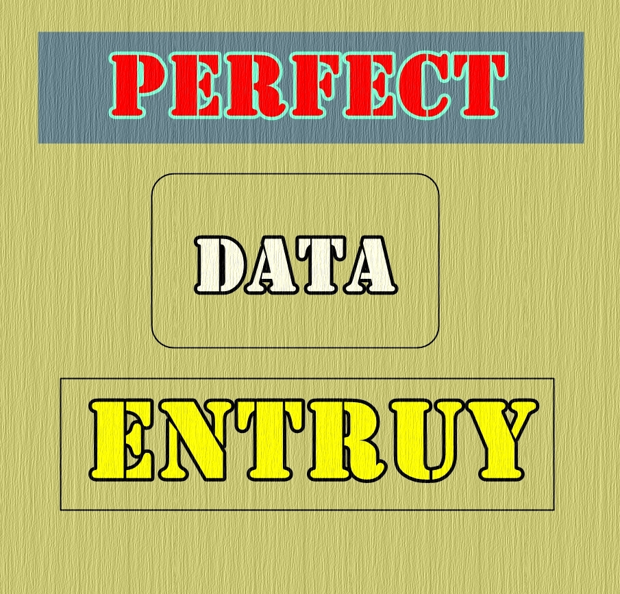 Perfect data entry internet research