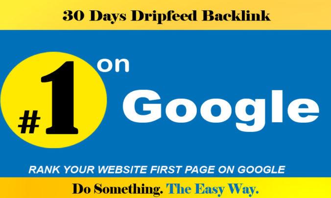 Rank Your Website on Google,  30 Days SEO Backlinks Manually work