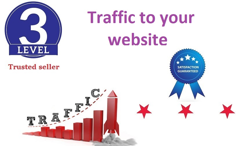 Send 1000+ daily human traffic from google,  yahoo etc for 10 days