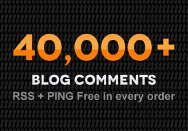 provide 40,000 Blog comments to your website