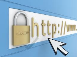 ensure your Website security or find Vulnerability contact me before order