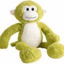gamma_monkey