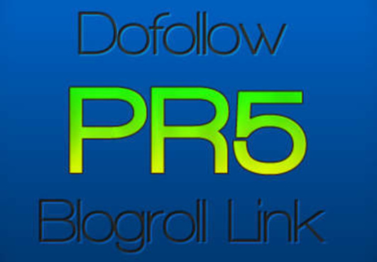 give-you-a-PERMANENT-PR5-DoFollow-Homepage-Link