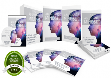 The Abundance Mindset Highest Quality PLR Product Pack