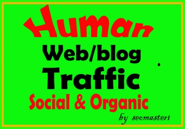 6000 Human Targeted visitors/traffic to your Web/Blog Adsense safe and get Good Alexa rank