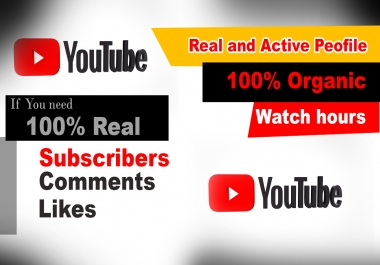 I will do real organic YouTube Promotion for real person