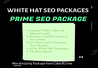 Ultimate SEO Package to Boost Google Ranking