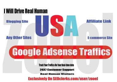 1000+ Real Human USA Traffics/Visitors (Google Analytics) -Best For Google Ranking