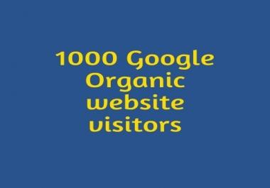 1000 Google Organic website visitors