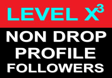 On-Sale Professional SEO Service 100+ Non Drop Profile Followers