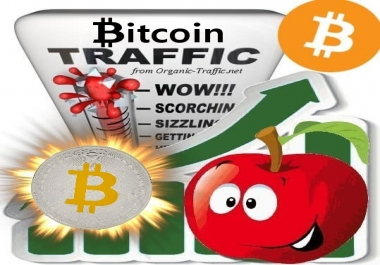 Buy Bitcoin Traffic - BTC Cryptocurrency Traffic for 30 days