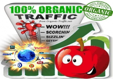 Organic & Targeted Traffic Service (VIP SEO Boost)