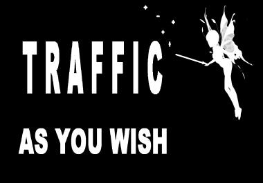 30 days Organic Targeted GEO human real Traffic visits hits ,as you wish