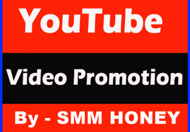 Provide Highest Quality YouTube Promotion
