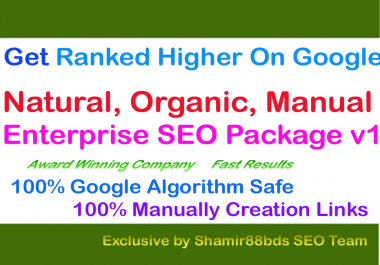 Enterprise SEO Package v1 Get Ranked Higher On Google