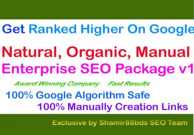 Enterprise SEO Package v1 Get Ranked Higher On Google
