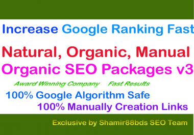 Monthly Organic SEO Packages v3 Increase Google Ranking Fast