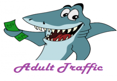 Provide 6000 Targeted Adult Website Traffic Visitors