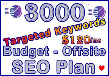 3,000 Targeted Keywords - Budget Offsite SEO Plan