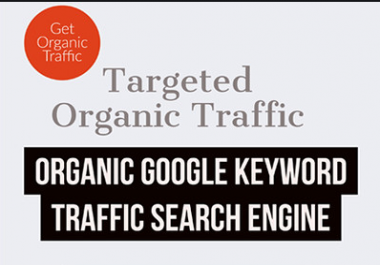60 Days Organic USA UK Canada Europe Targeted Real Website Visitors Traffic