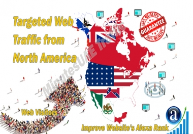 North America web visitors real targeted Organic web traffic from North America