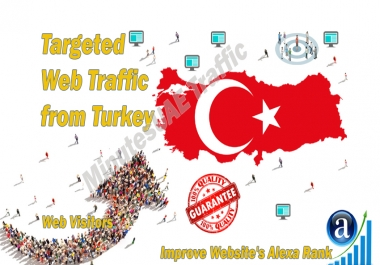 Turkish web visitors real targeted Organic web traffic from Turkey