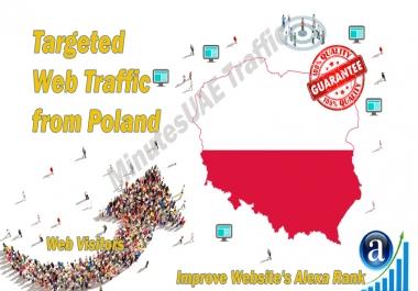 Polish web visitors real targeted Organic web traffic from Poland