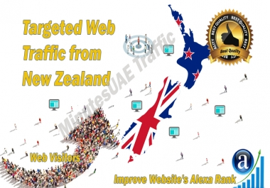 New Zealander web visitors real targeted Organic web traffic from New Zealand