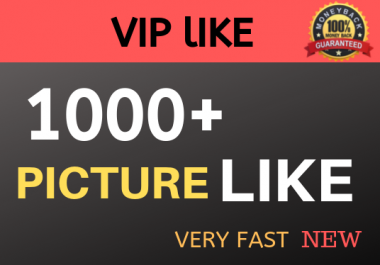 High Quality 1000+ Likes and View Guarantee 24 Hrs Delivery