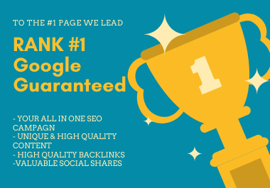 Get Ranked #1 Page On Google 30 Days ALL IN ONE SEO Package