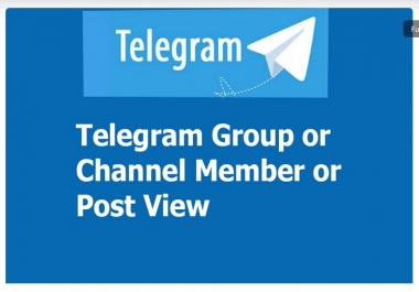 Real & Active Per Thousend T Gram Channel Audience