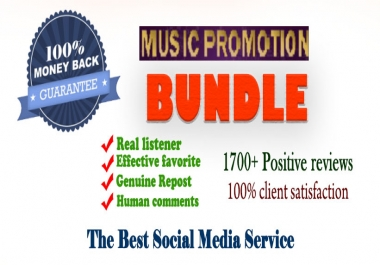 Super Promotion package- Promote your track with Best promotional services