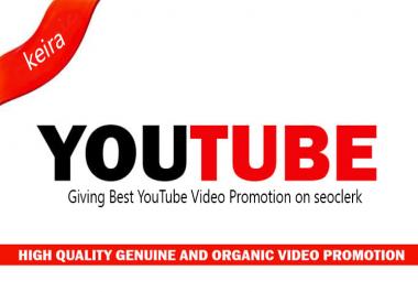 Super Quality YouTube Video Promotion
