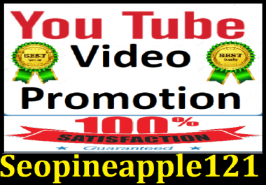 After Update working YouTube Video promotion and Social media Marketing