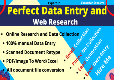 I will do Perfect Excel Data Entry and Web Research manually